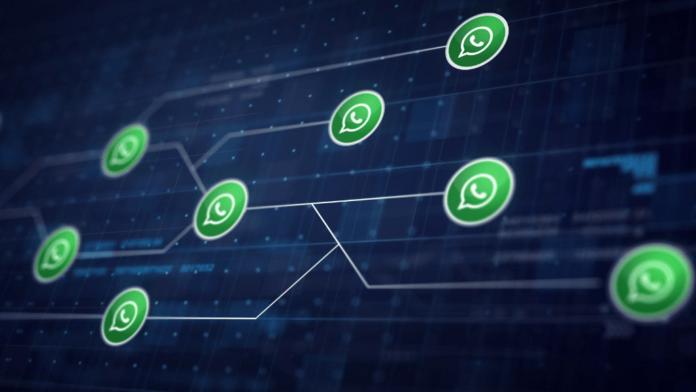 Privacy WhatsApp 2021 ecco cosa cambierà dall'8 febbraio